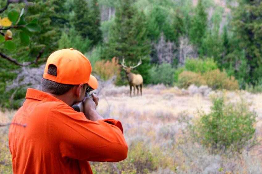 elk-hunter-istock_000002185957small